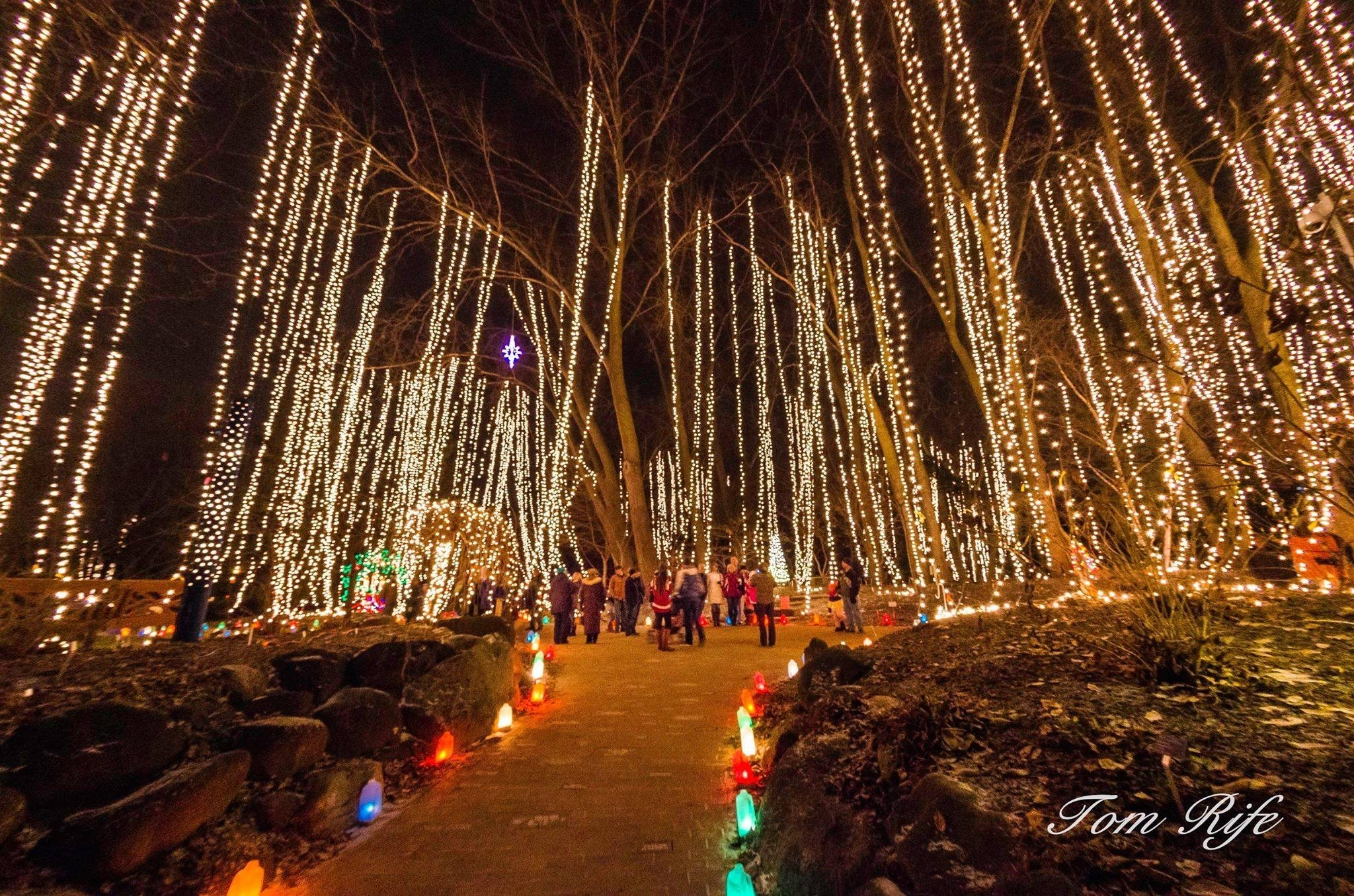 Holiday Light Show - Rotary Botanical Gardens - 1455 Palmer Drive pertaining to Rotary Garden Light Show Janesville Wi