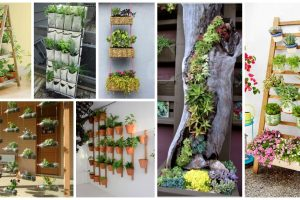 Here's How To Save Time And Space By Vertical Gardening At Home! with Home Garden Design In Tamilnadu