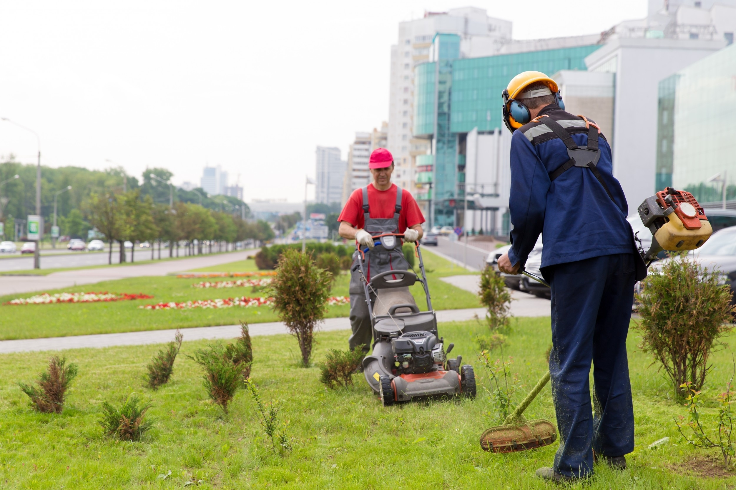 Cut Down Your Lawn Maintenance Costs   Dwell+ intended for Landscape And Yard Maintenance